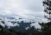 雪見森林遊憩區:IMG_8931.JPG