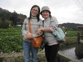 竹子湖:IMG_6444_調整大小_調整大小.JPG