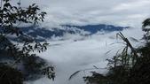 雪見森林遊憩區:IMG_8992.JPG