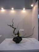 2011台北國際蘭展:IMG_6175_調整大小.JPG