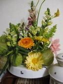 99-----菜花園:IMG_3215_調整大小.JPG