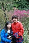 竹子湖:DSC_0077_調整大小_調整大小.JPG
