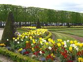 花園:IMG_8189