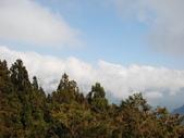 太平山&見晴古道:調整大小DSC_0757.JPG