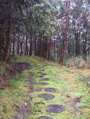 太平山翠峰湖山毛櫸步道:調整大小100_0723.JPG