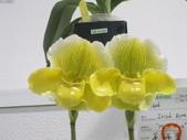 2011台北國際蘭展:IMG_6350_調整大小.JPG