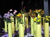 2011台北國際蘭展:IMG_6090_調整大小.JPG