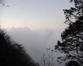 太平山&見晴古道:調整大小DSC_0930.JPG