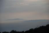 竹子湖:DSC_0177_調整大小_調整大小.JPG