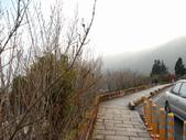太平山&見晴古道:調整大小DSC_0813.JPG