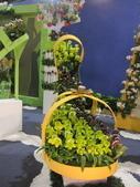 2011台北國際蘭展:IMG_6111_調整大小.JPG
