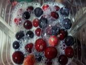 Berry:調整大小101_8631.JPG