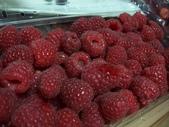 Berry:調整大小101_8619.JPG