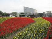 花博--春之花頌:IMG_4719.JPG