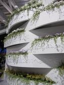 2011台北國際蘭展:IMG_6051_調整大小.JPG