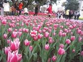 花博--春之花頌:IMG_4788.JPG