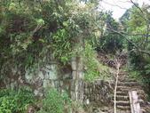 九份-金瓜石-貂山古道:調整大小照片 123.jpg