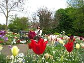 花園:IMG_8151