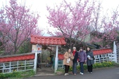 100之櫻花:DSC_0424.JPG