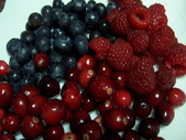 Berry:調整大小101_8624.JPG