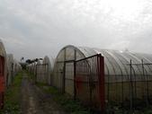 九斗休閒農場:DSCN0048.JPG