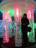 -18度c 的冰雕展。:1671551895.jpg