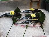 大阪消遙五日DAY1:河豚