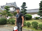 20141101日本DAY7和歌山城:IMG_4646.JPG