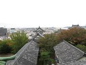 20141101日本DAY7和歌山城:IMG_4648.JPG