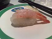 迴轉壽司吃到飽:20081111309.jpg