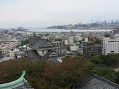 20141101日本DAY7和歌山城:IMG_4649.JPG
