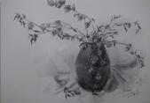 我的作品~素描:生命/炭筆素描/4K