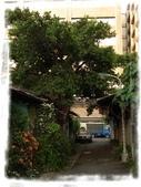 華光社區:R1043047.jpg