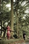 外拍-油菜花與中正大學:1962669404.jpg