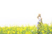 外拍-新市花海(待增):1590763041.jpg