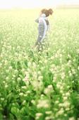 外拍-新市花海(待增):1590772763.jpg
