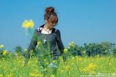 外拍-油菜花與中正大學:1962669390.jpg