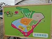 一二九竹風一日之偶然遇見的---客庄新春茶花季:DSC06752.JPG