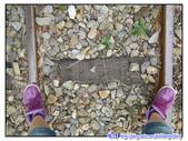 2011秋旅--尋找『嘉』南平原上的童年『義』術:P78.jpg