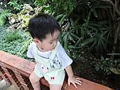 林家花園...下雨也很美:DSC03941.JPG