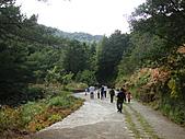雪山飛湖遊~~下篇:DSC05189.JPG