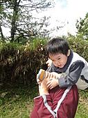 雪山飛湖遊~~下篇:DSC05161.JPG