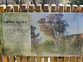 雪山飛湖遊~~下篇:DSC05226.JPG