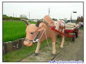 2011秋旅--尋找『嘉』南平原上的童年『義』術--板頭村:P133.jpg
