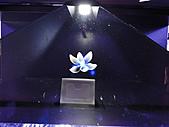 首次花博遊--夢想館:DSC00135.JPG