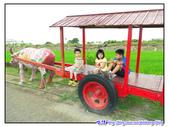 2011秋旅--尋找『嘉』南平原上的童年『義』術--板頭村:P138.jpg