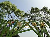 首次花博遊--美術公園區:DSC09282.JPG