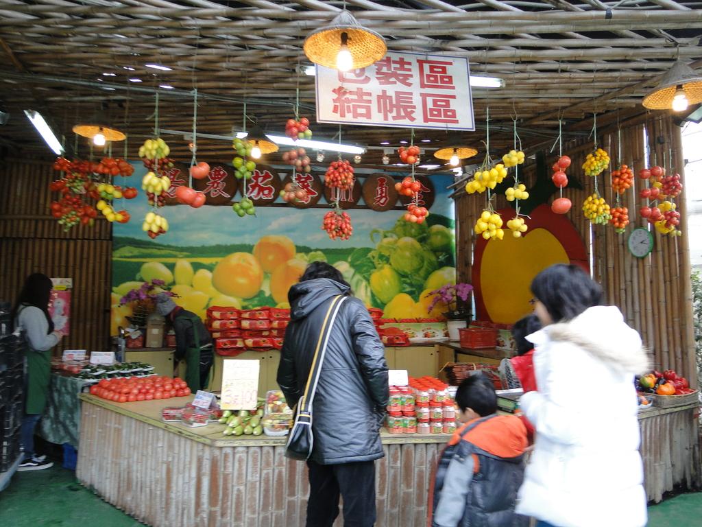 一二九竹風一日之這些是蕃茄---金勇DIY蕃茄農場:DSC06885.JPG