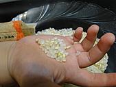 寶養米試吃--愛評網換的哦!:DSC06337.JPG