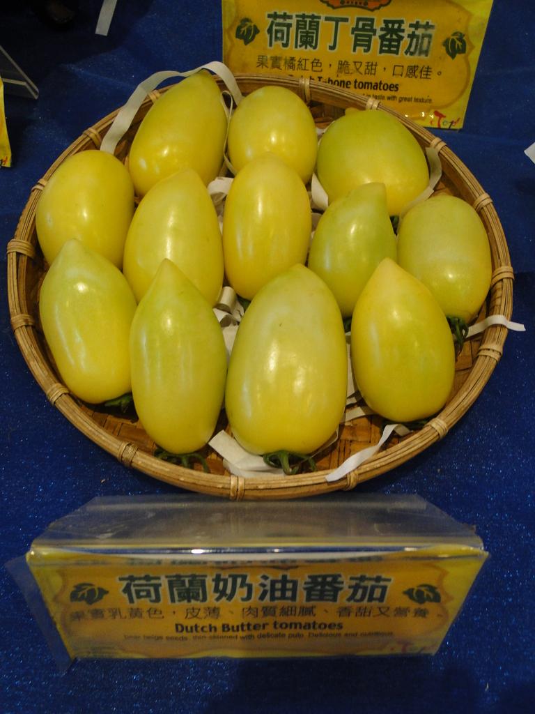 一二九竹風一日之這些是蕃茄---金勇DIY蕃茄農場:DSC06892.JPG